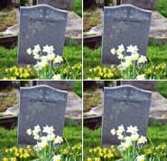 Reincarnation and Karma - Life after Death