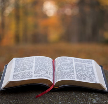 Photo of a Bible